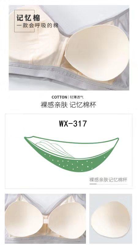 wx-317 (7).jpg